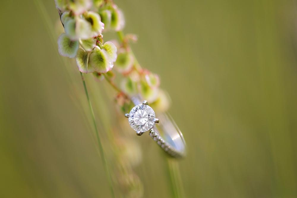 Kyla-Mark-Nova-Scotia-Enagement-Photography-Candace-Berry-Photography-2014032.jpg