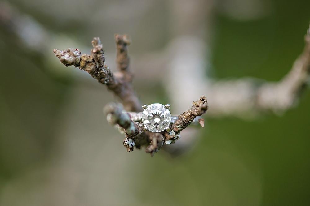 Kyla-Mark-Nova-Scotia-Enagement-Photography-Candace-Berry-Photography-2014034.jpg