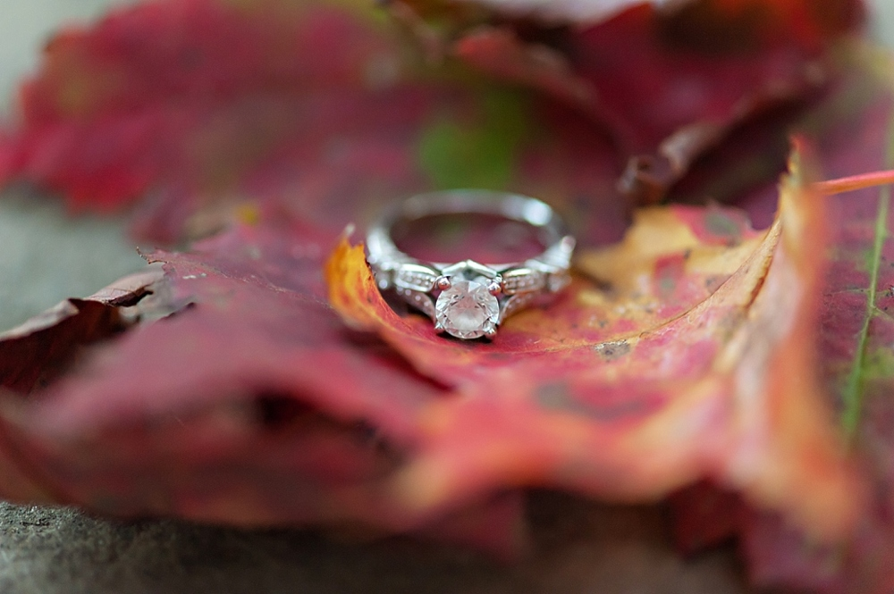 Fall-Engagement-Photography-Woodsie-Engagement-Session-Halifax-Wedding-Photography-Candace-Berry-Photography_34.jpg