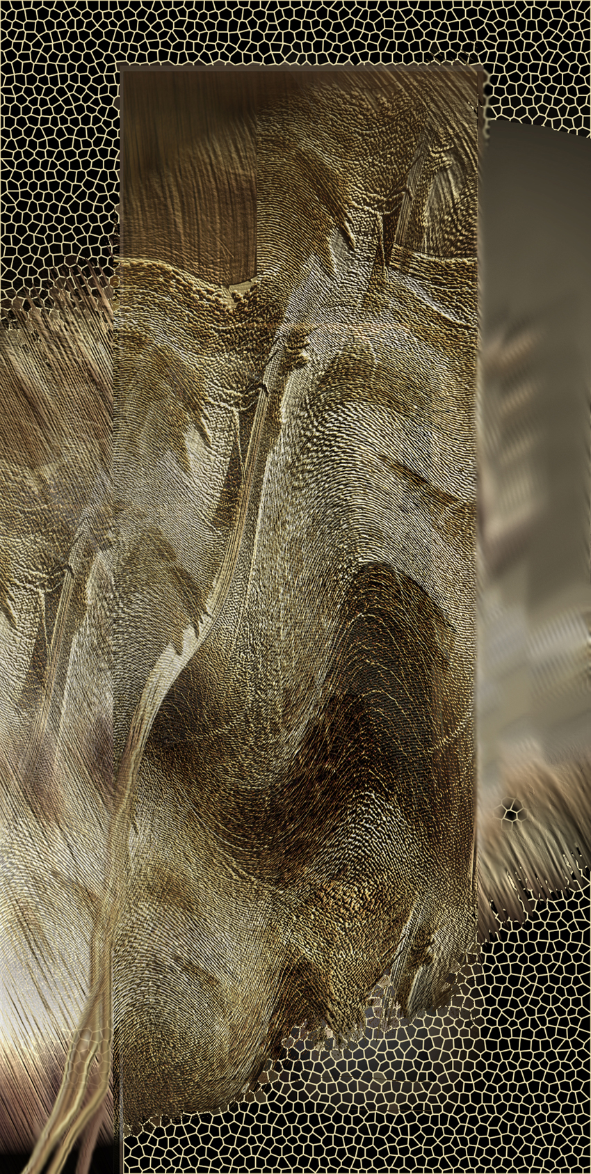 Wiatr 4, 68x34 cm, 2001.jpg