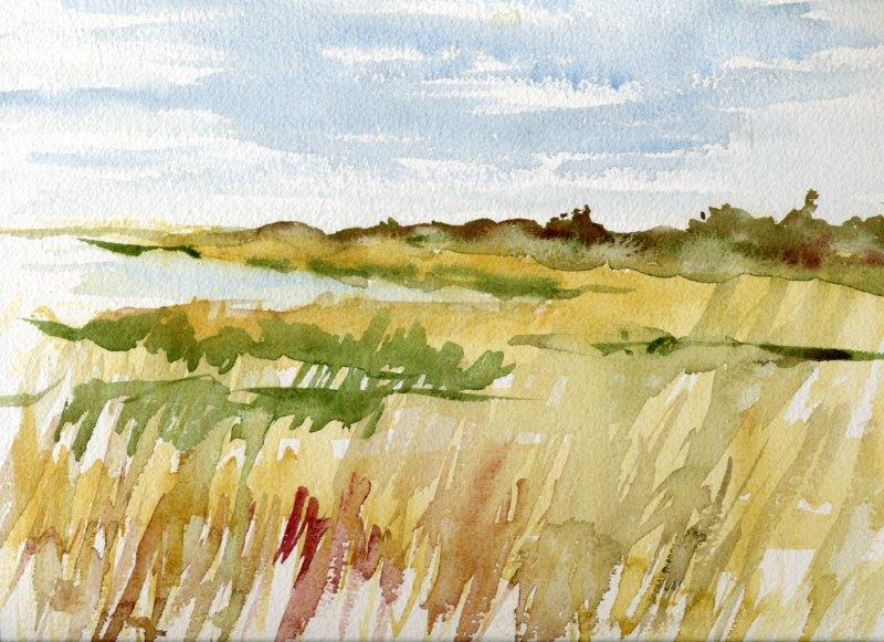 FIELD OF GRASS-BLOCK ISLAND