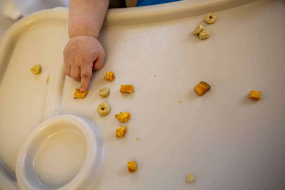 Documentary family detail picture of chubby toddler finger poking a piece of sweet potato which is scattered about her high chair tray with cheerios.
