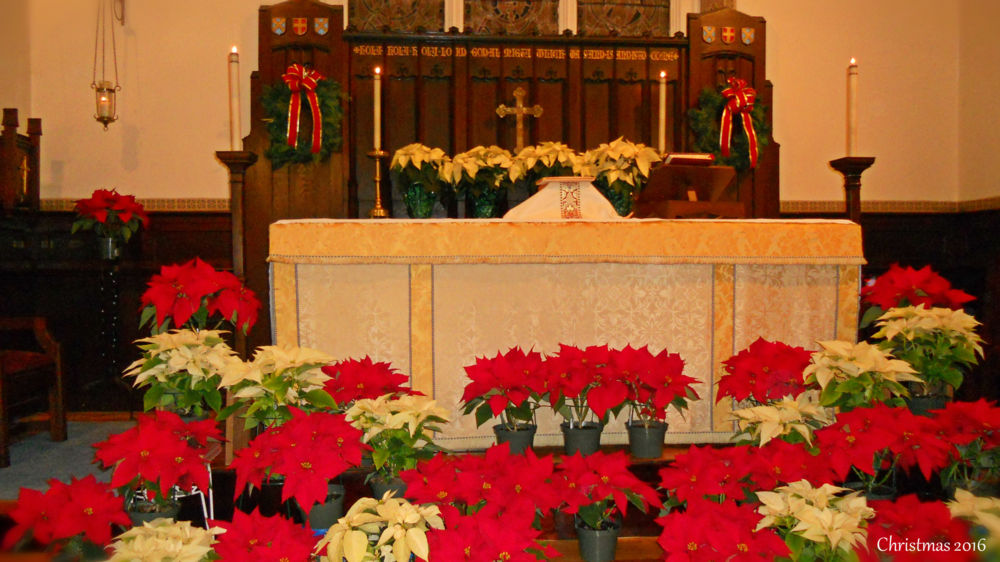 Christmas Eve Service - Saturday, December 24th, 2016  Our beautifully decorated altar by the Ladies of St. John's Altar Guild.