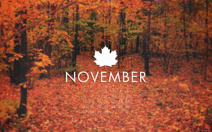November Programming Overview