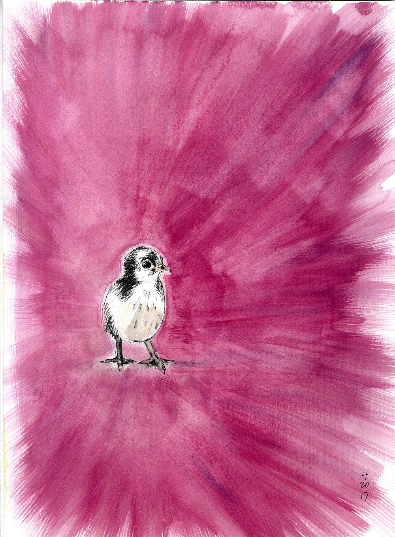 waters_watercolor.chick.jpg