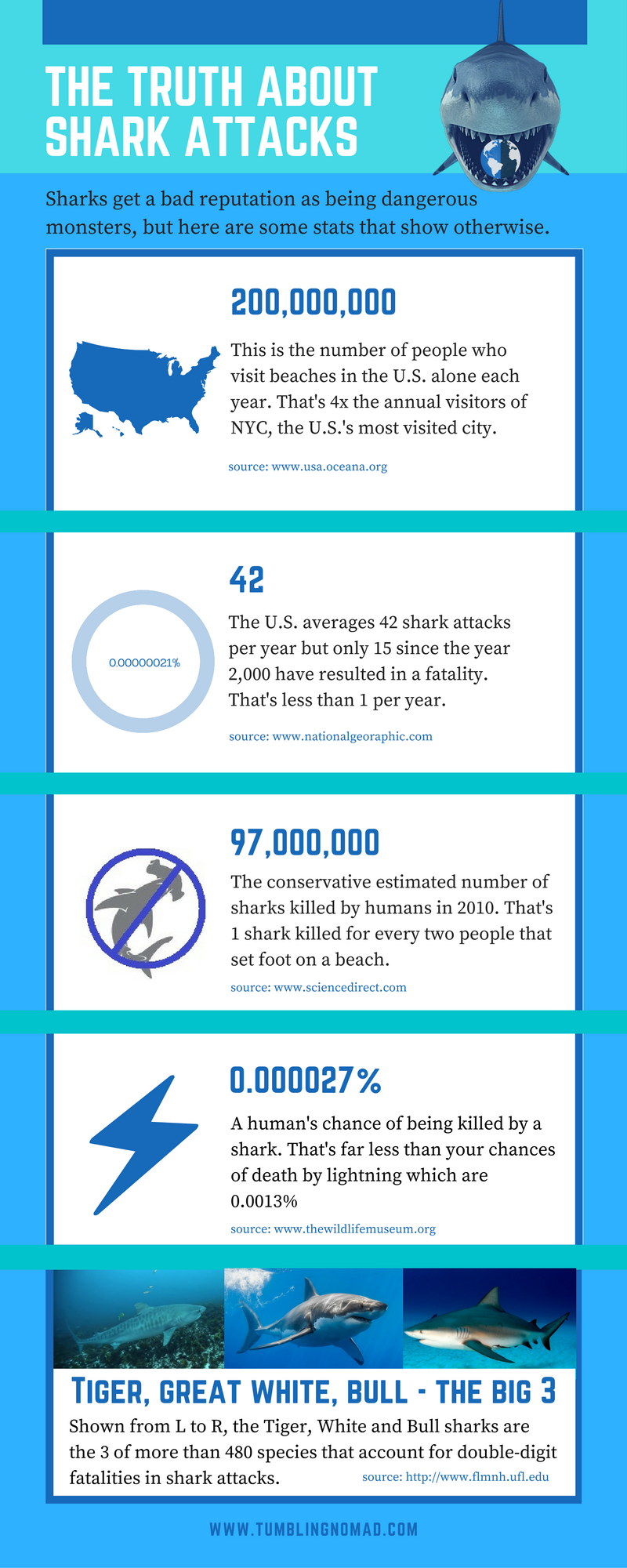 the_truth_about_shark_attacks