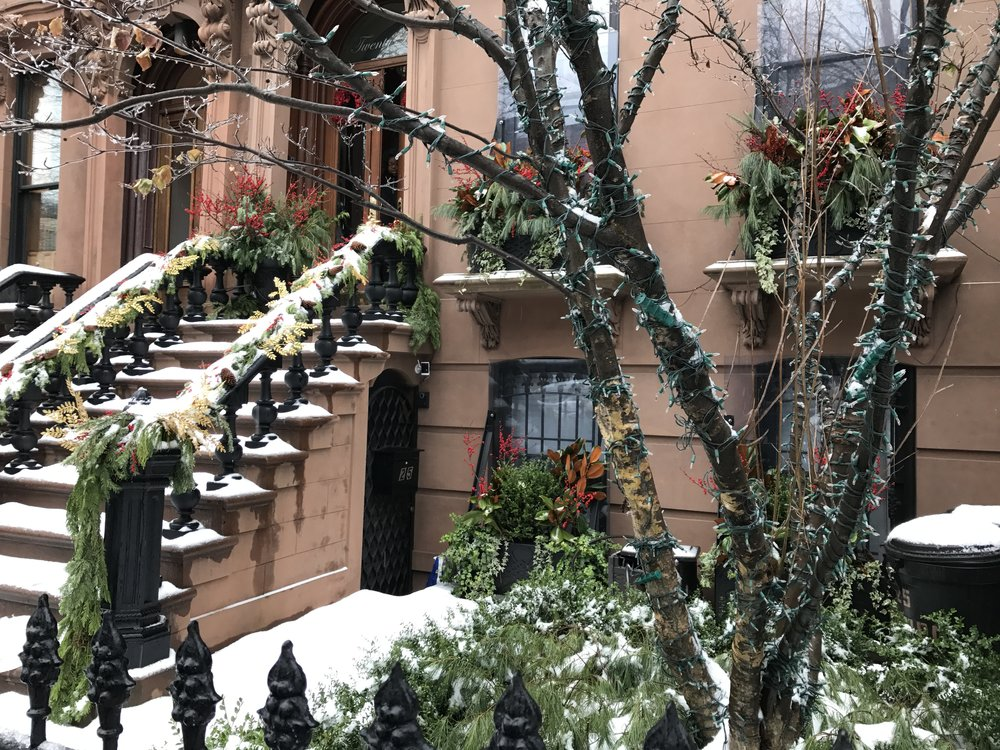 brownstones at Christmastime