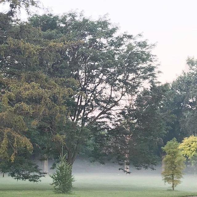 In every walk with nature one receive far more than he seeks. - John Muir  #morningstroll #mistymornings #summerweather #earlybirdgetstheworm #minnstagramers