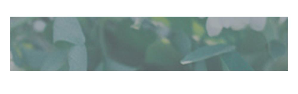 domino_logo.png
