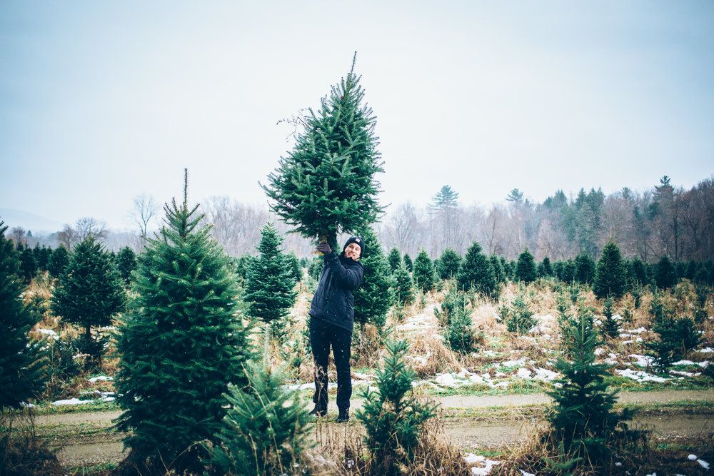 ChristmasTree-2.jpg