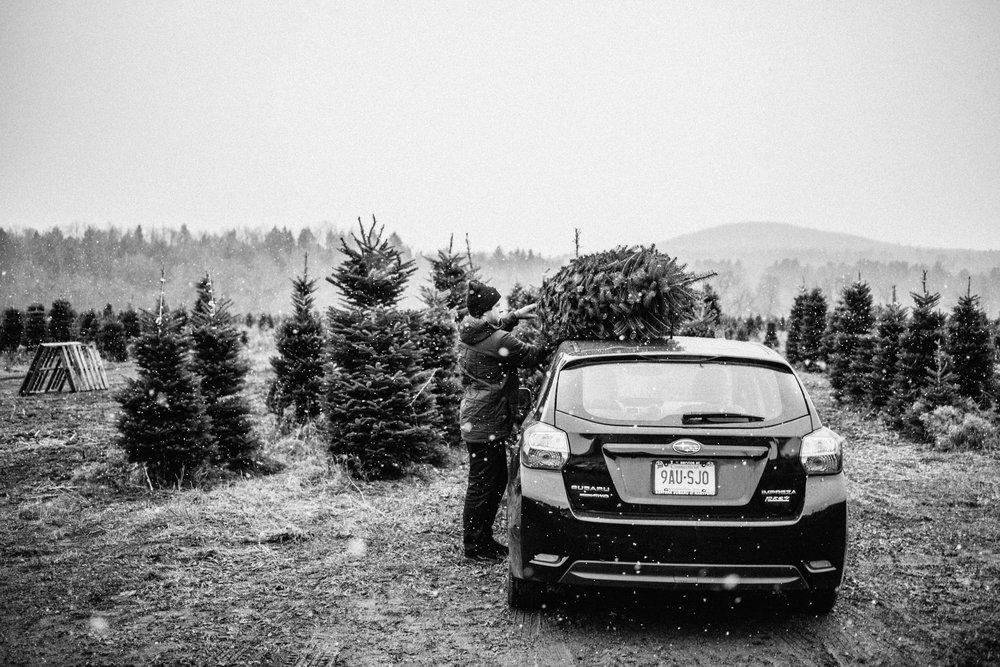 ChristmasTree-8.jpg