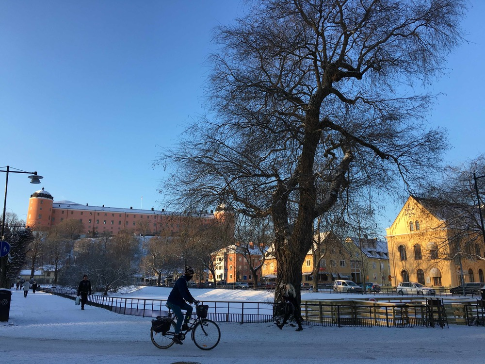 Uppsala castle and Svandammen (the Swan pond).