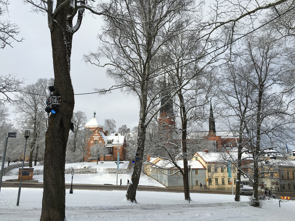Uppsala cathedral in winter.