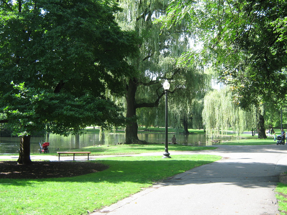 Boston Public Garden, site of a former salt marsh