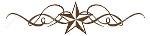 star divider.jpg