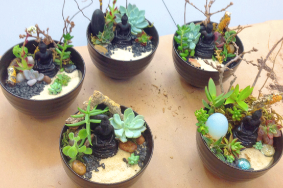 Make Your Own Mini Zen Garden At Open Eye Dec. 12th U0026 19th