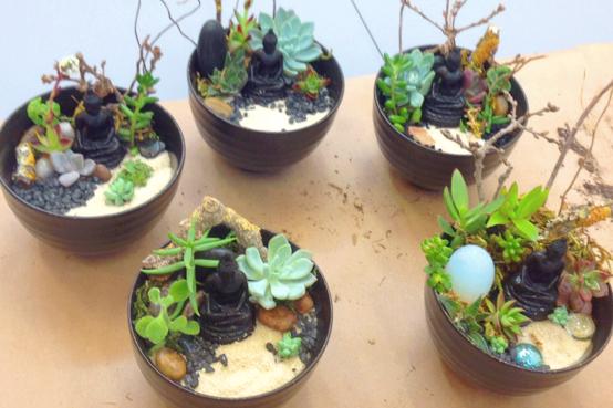 make your own mini zen garden at open eye dec 12th 19th - How To Make A Zen Garden