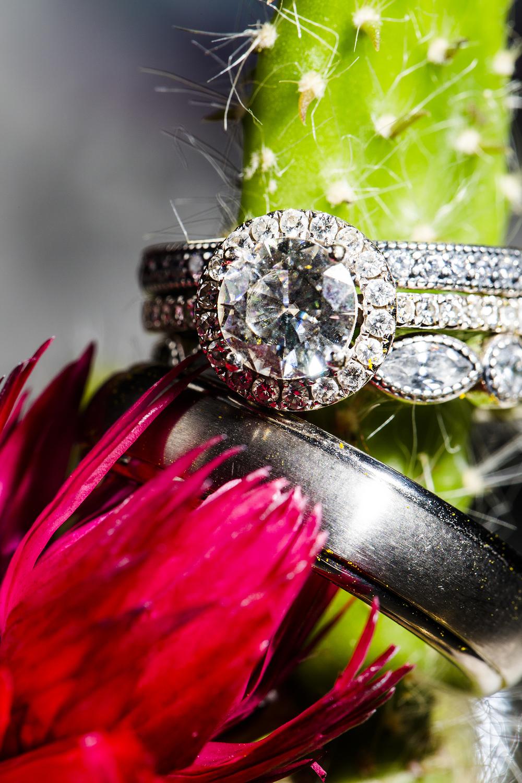Cactus, Ring Shot, Wedding Details