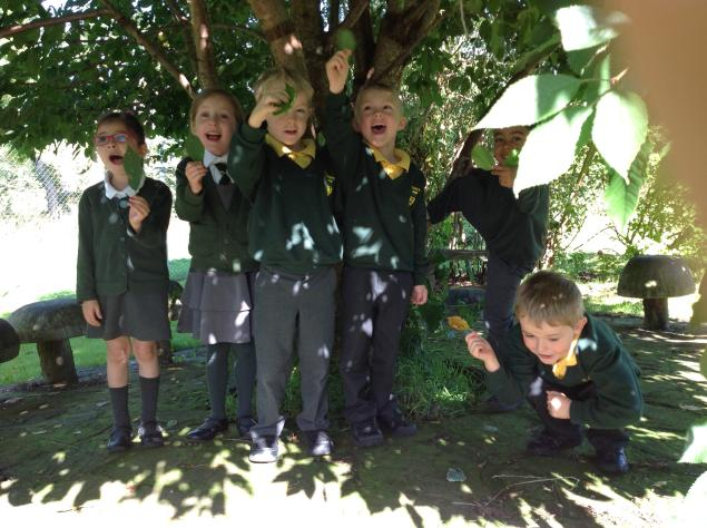 In Science we walked around the school grounds looking for seasonal change. We chose a tree to track through the year to see how it changes.