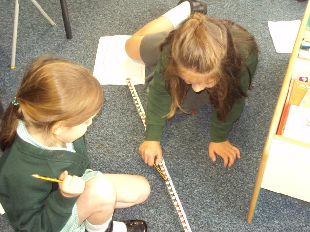 In class we have been estimating and comparing things with a metre stick.  We measured things shorter than a metre and longer than a metre.