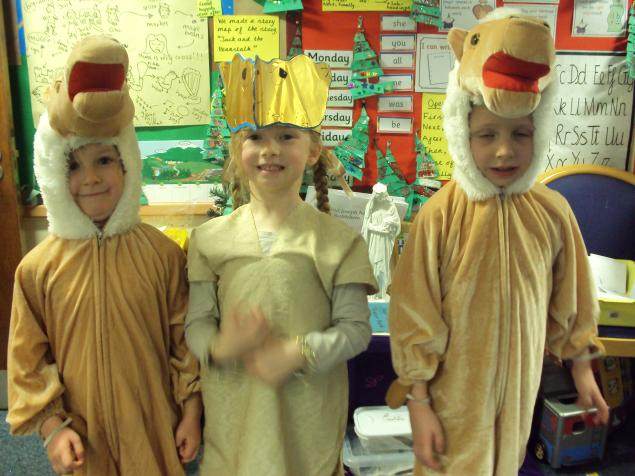 Year 1 camels.