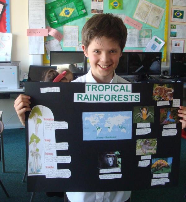 Ciaran's rainforest poster