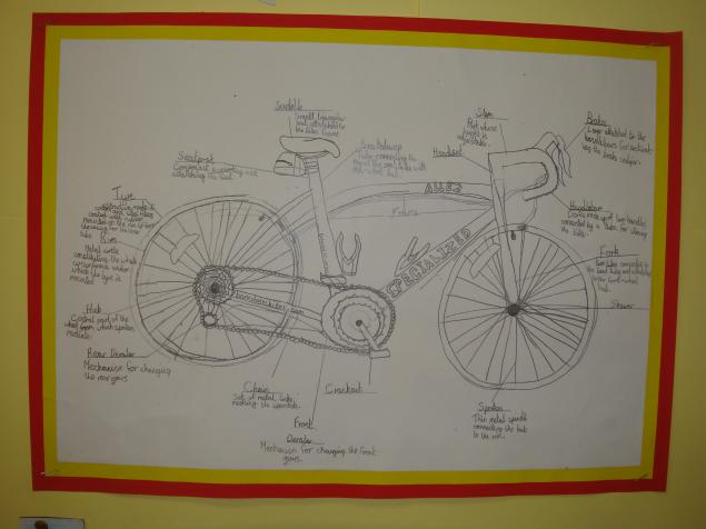 Logan - sketch and labelling of the bike