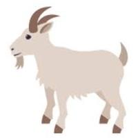 Goat (1).jpg