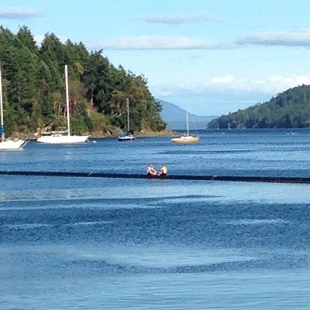 Not just a breakwater! Thanks to our guests for making it a great Canada Day weekend 🇨🇦#happyboaters #portbrowningmarina #penderisland #islandlife #funinthesun #canadaday🇨🇦