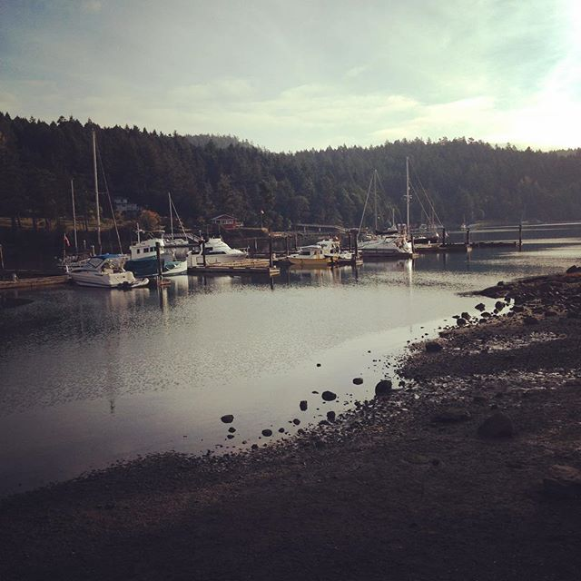 Hard to believe it's September on such a beautiful morning. #portbrowningmarina  #penderisland #happyboaters #islandlife #stillopen
