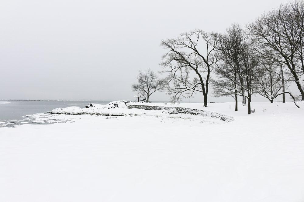 manor-park-snow-larchmont-gourmandesante