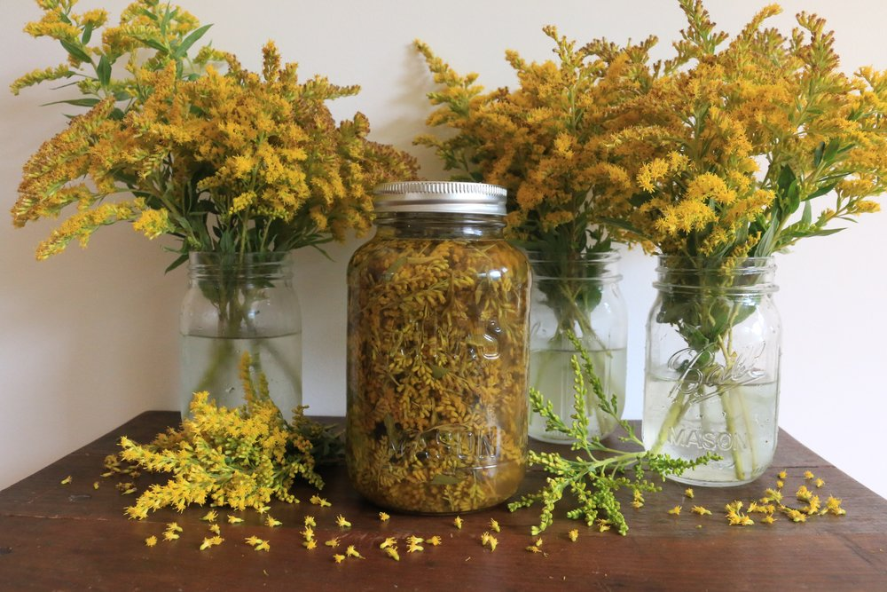 Tinctures Decoctions Infusions-culinaryWitch