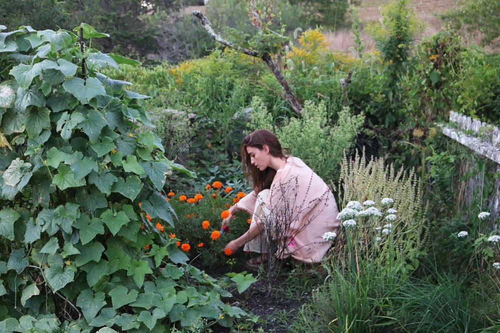 Healing-Garden-Herbs-CulinaryWitch