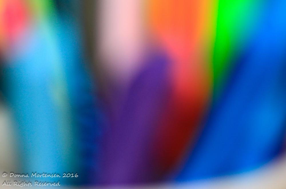 _MG_2762.jpg