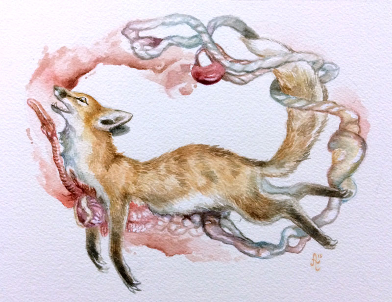 water_fox3.jpg