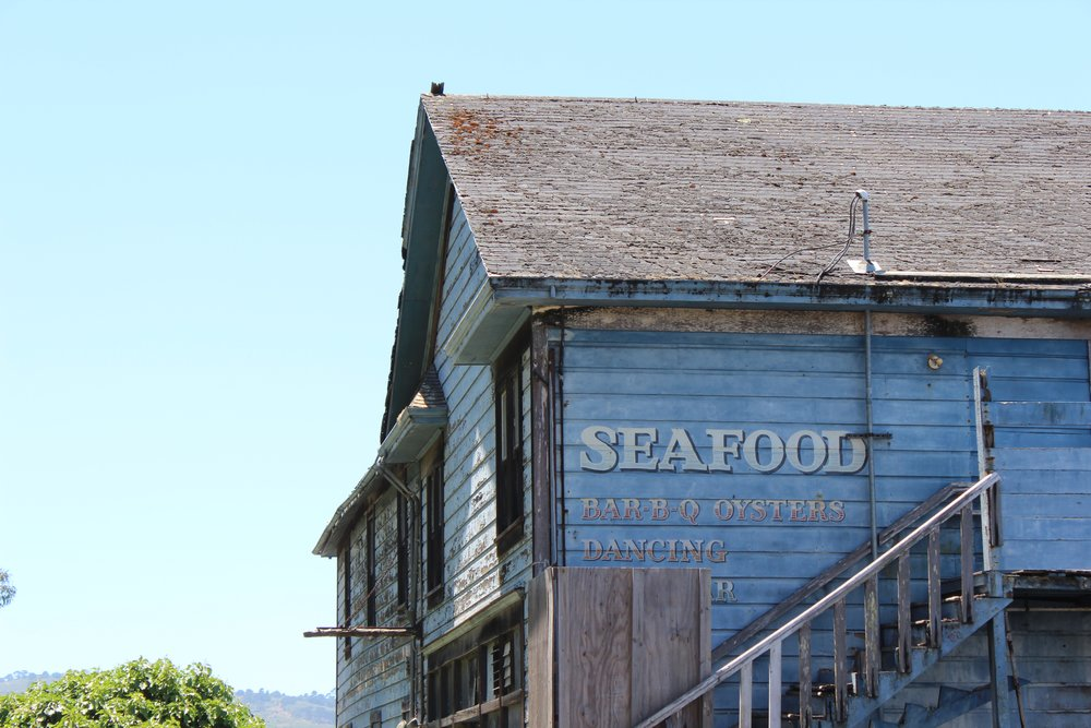 tomales-bay-oyster-farm-on-verve-foodie-tour