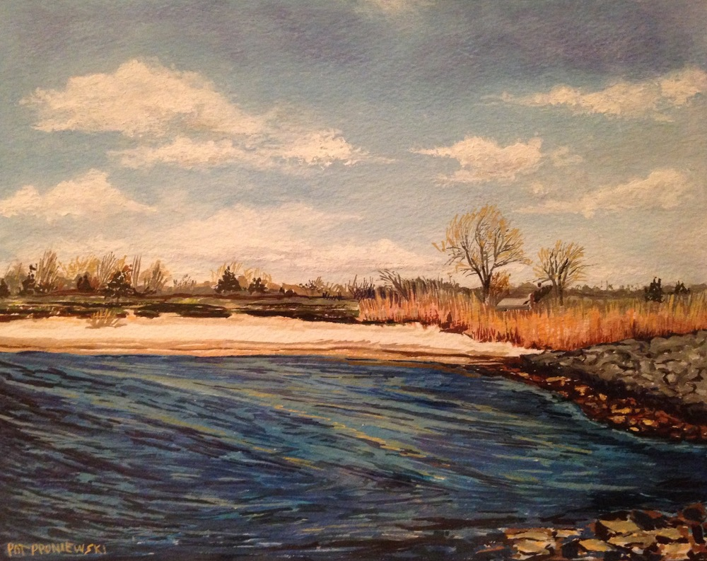 """Fisherman's Cove-Dog Beach"""