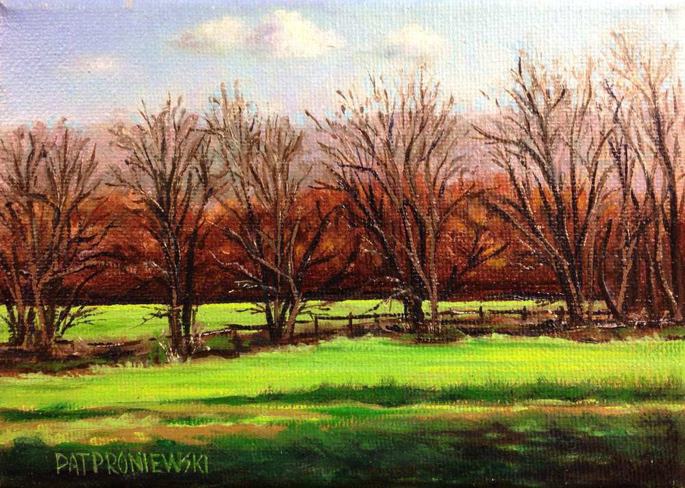 """The Spring Pasture"""