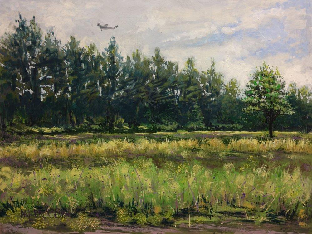 """""""Open Air Over Gronendahl Farm"""""""