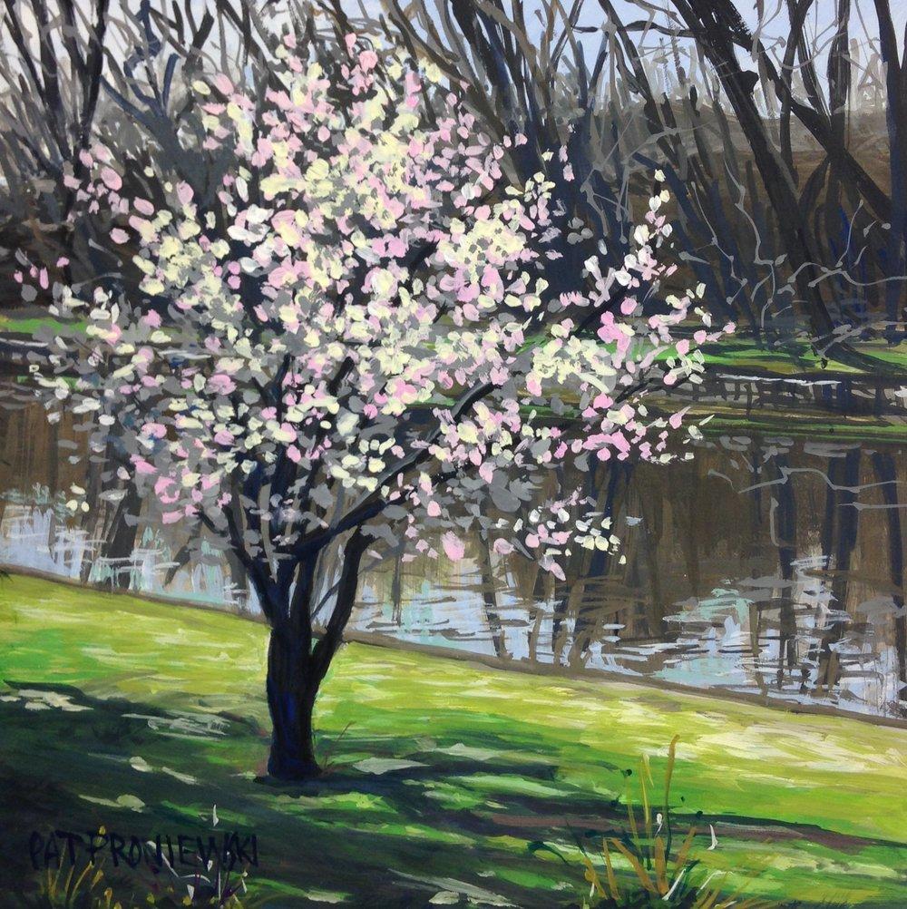 """Budding Blossoms, Kingsland Park, Nutley, NJ"""