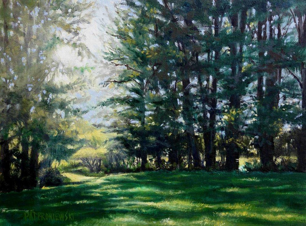 Summer: Late Afternoon On Gronendahl Farm, Bucks Co. PA