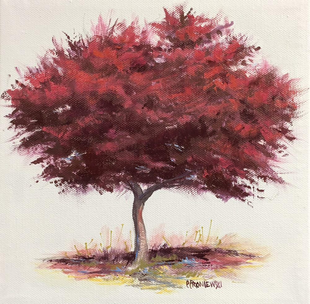 """Red Maple"""