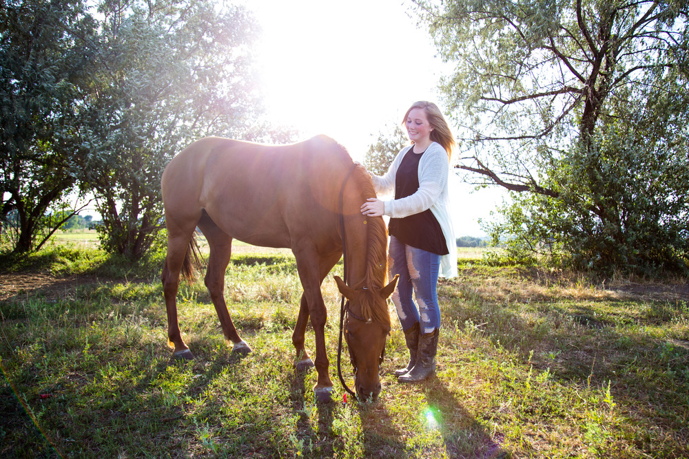 Equestrian Photography Denver Colorado