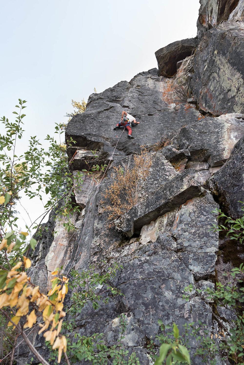 lucas_climbing.jpg