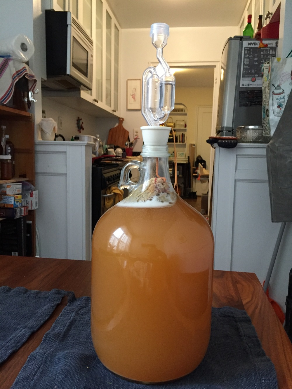 Ready for the growler w/ airlock. A bag of heather is flavoring it while fermenting. I'll remove the bag for capping.