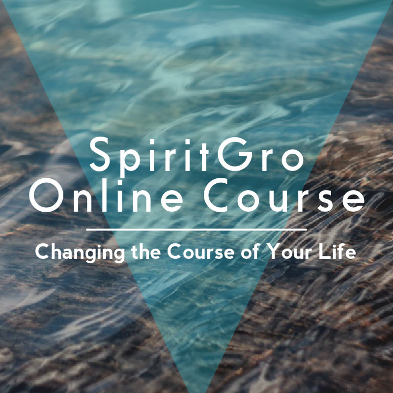 4 Week Online Mentorship Course