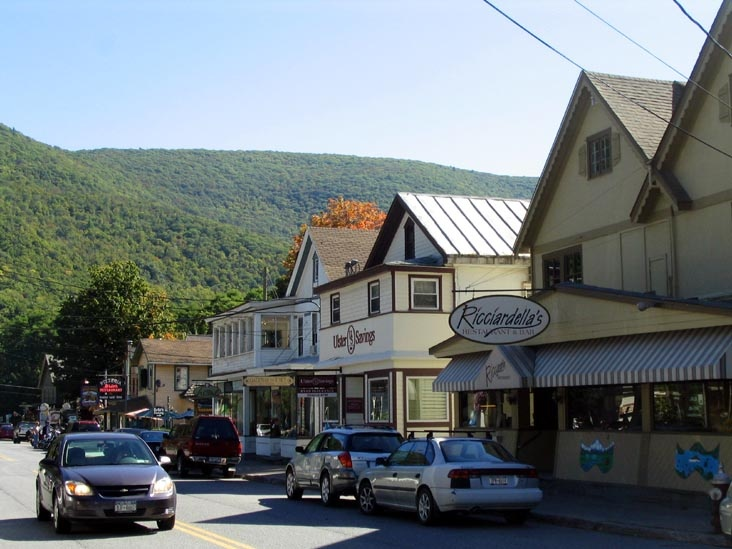 TOWN: Phoenicia sits nestled in the gateway of the magnificent Catskill Forest Preserve. Providing some of the best year-round outdoor recreation you'll find anywhere. The diner is one of the best in the county!