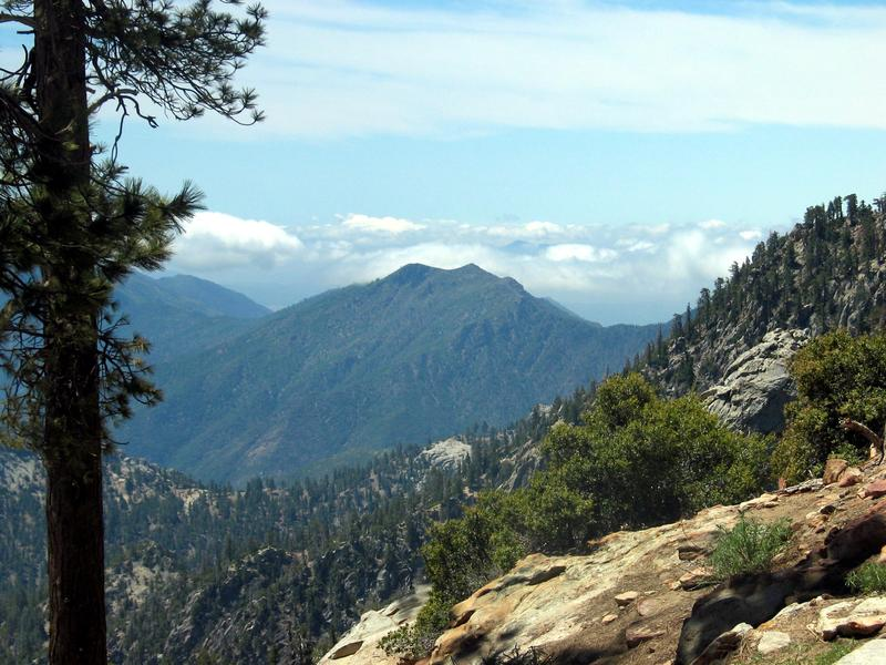 Climbing over 5,000 ft you'll experience cool temperatures and the smell of pines.