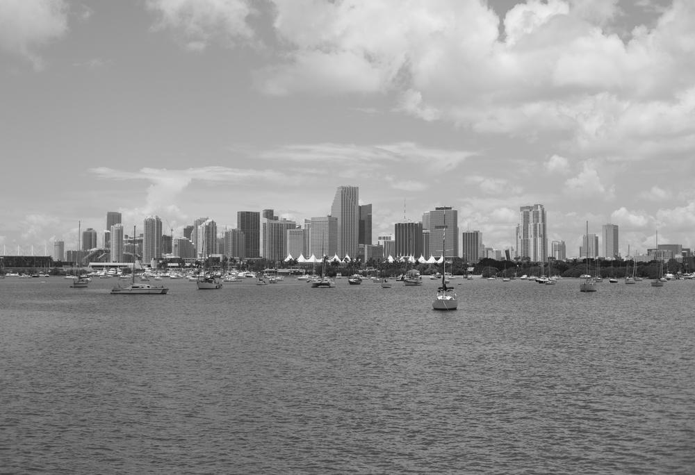 City BW.jpg