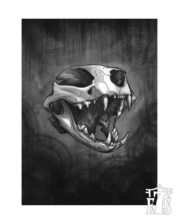 Cat Skull Aether.jpg
